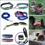 Collars / Leads / Halters & Harnesses